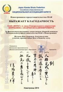 Благодарность за финансовую поддержку сборной команды спортсменов Регионального представительства НАК г.Новотроицка (каратэ) 2014 год